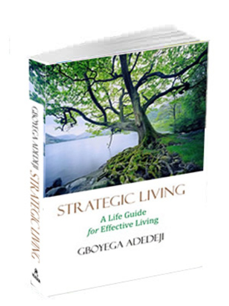 Strategic Living: A Life Guide for Effective Living
